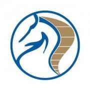logo of Bramlands Aviation