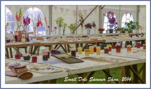 Small Dole Summer Fayre - July 2015